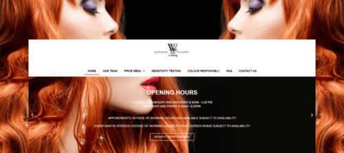 Suzanne Wilson Hair and Beauty Website Image